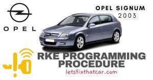 KeyFob RKE Programming Procedure-Opel Signum 2003